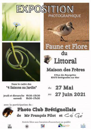 """Expo photos """"Faune et Flore du littoral"""""""